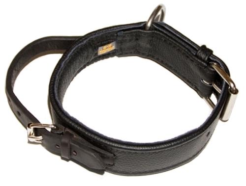 Su cierre de hebilla fuerte permite a su perro llevar el collar en todo momento sin riesgo incluso durante los entrenamientos más duros.