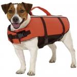 Chaleco salva-vidas para perro económico - Chaleco salva-vidas para perros económico. Para que el perro se bañe con total seguridad. Con cierres de clip para un cierre perfecto. Disponible en varias tallas para perros pequeños, medianos y grandes.