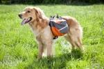 """Alforjas mochila para perros """"Tracking Lead & Travel"""" - Alforjas para perros con arnés incorporado. Con bandas reflectantes y material transpirable. Para pasear al perro y que él mismo pueda llevar cosas como agua, comida, etc."""