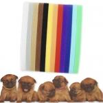 Collares de colores vivos para identificar cachorros en camadas - Collares fabricados en velcro con colores llamativos para identificar fácilmente a los distintos cachorros de una camada. Totalmente ajustables para todo tipo de perros, el kit incluye 12 collares distintos.