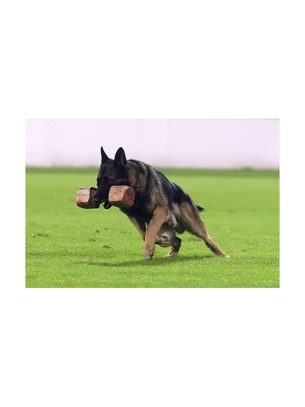 Aport de madera para IPO RCI - Aport de madera de diferentes pesos para iniciar cachorros al cobro, utilizar como juguete o para trabajar el cobro forzado. Aport reglamentario para RCI IPO.
