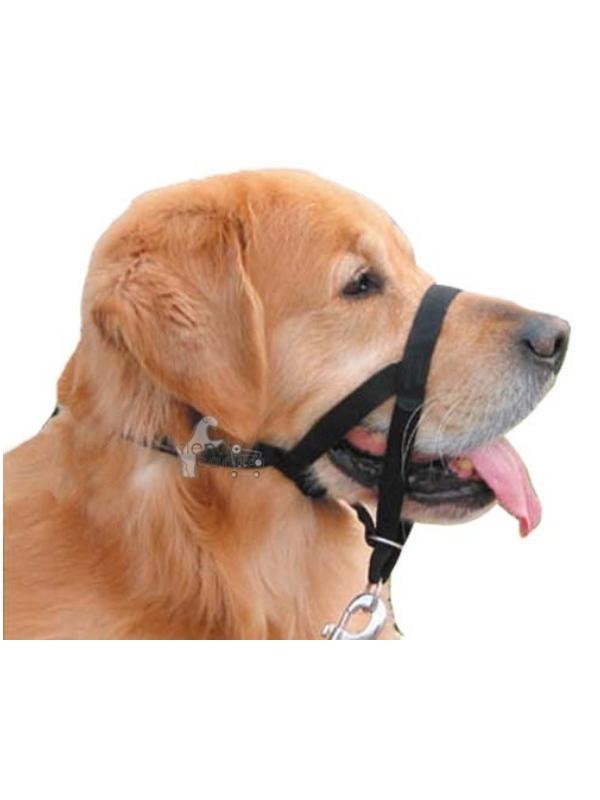 Halti Arnés cabestro de control y de adiestramiento para perros - Arnés cabestro de control
