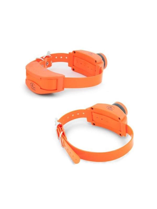 Collar adicional para equipo de adiestramiento y becada Sport Trainer de SportDog