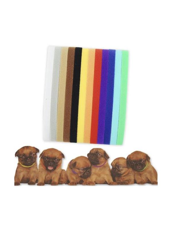 Collares de colores vivos para identificar cachorros en camadas